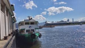 Under good weather, ferry berthing at pier, backdrop is Kai Tak Cruise Terminal