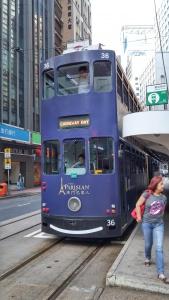tram number 36 deep blue Parisian commercial