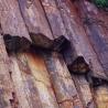 The broken hexagonal rock column at East Dam of High Island Reservoir