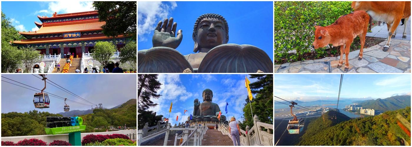 Po Lin Temple, Big Buddha, calf, Ngong Ping Cable Car, Steps to Big Buddha, view outside Cable Car