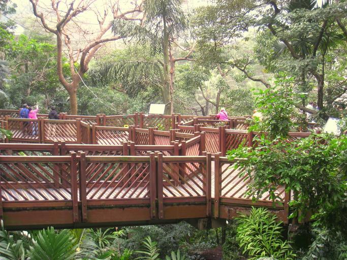 Raised walkway in Edward Youde Aviary of Hong Kong Park